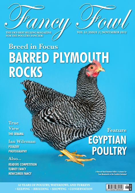 Fancy Fowl - November 2012 - UK Chicken, Poultry, Waterfowl and Turkey Magazine