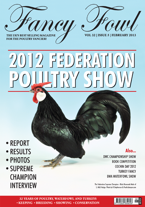 Fancy Fowl Poultry Magazine - February - Federation Poultry Show, International Cochin Day, BWA National Waterfowl