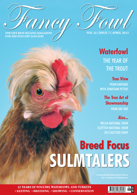 Fancy Fowl Poultry Magazine - April - Sulmtaler, Pekin Bantam, Poultry Shows, Welsh National Show, Scottish National Show