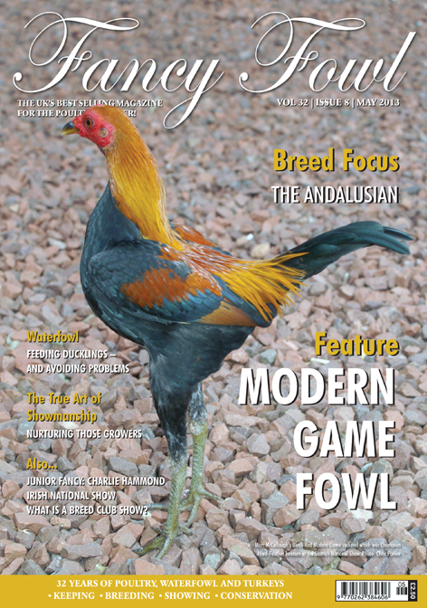 Fancy Fowl Poultry Magazine - May - Modern Game Fowl, Northampton Spring Show, Feeding Ducklings, Andalusian