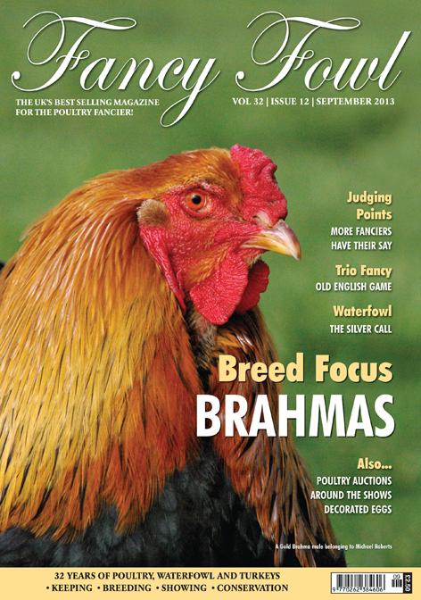 Fancy Fowl Poultry Magazine - September - Brahmas, Silver Call Ducks, Reading & District Bantam Society