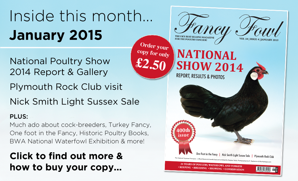 34-4-Jan-2015-National-Poultry-Show-2014-Report-Light-Sussex-Sale-Nick-Smith-Plymouth-Rock-Club-Cock-Breeders-BWA-Waterfowl-Exhibition-Stratford-Upon-Avon