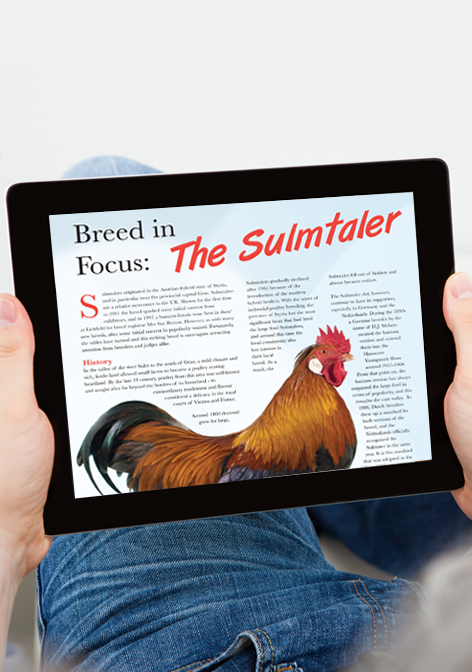Fancy-Fowl-magazine-on-your-tablet