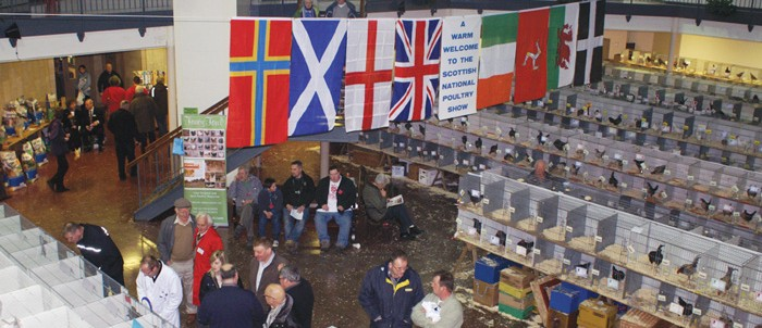 Scottish National Poultry Show 2015 News