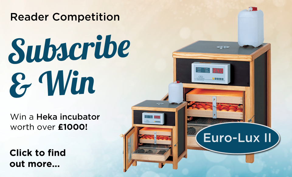001-win-a-heka-incubator