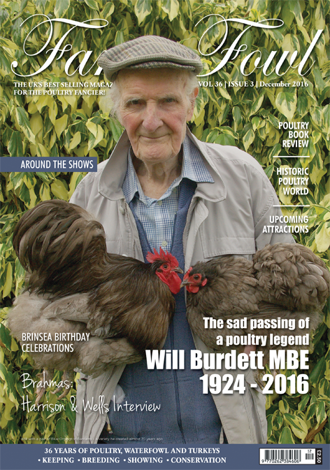 Fancy Fowl Poultry Magazine December