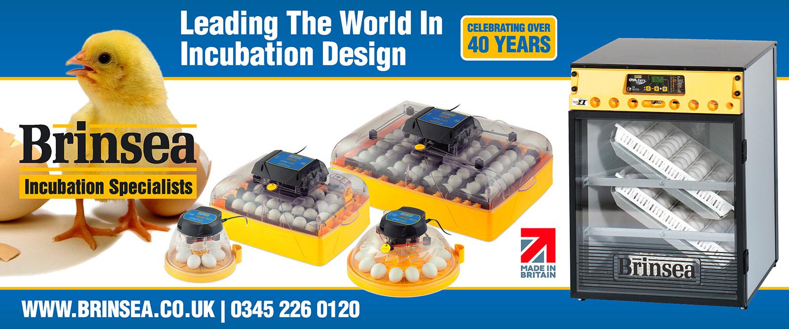 Brinsea incubator specialists