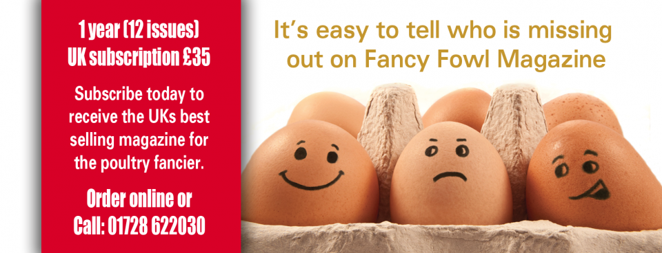 Ensure of your copy each month with a subscription to Fancy Fowl
