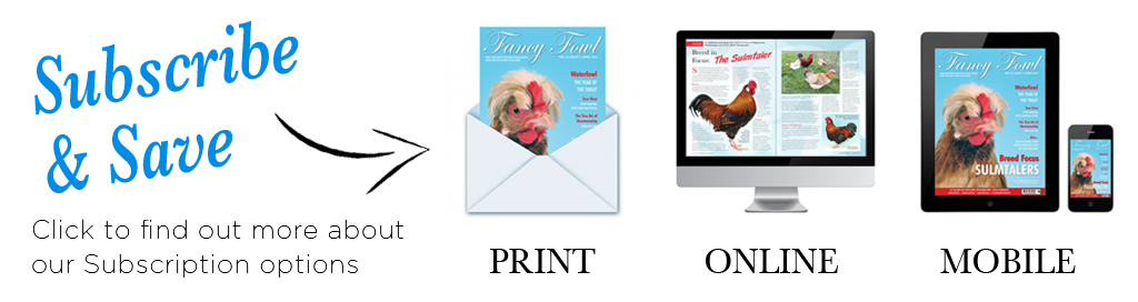 Subscribe to Fancy Fowl, the original magazine for the poultry fancier