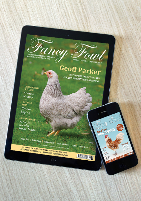 Fancy-Fowl-magazine-on-your-smartphone-or-tablet